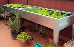 comienza tu huerto urbano-mesa-de-cultivo
