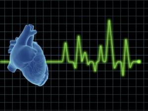 l-carnitina-efectos-secundarios-taquicardia