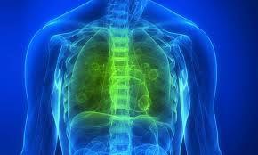 limpiar pulmones de forma natural-pulmones sanos