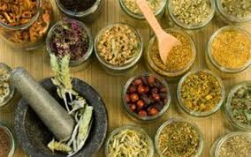 el uso de plantas medicinales- almacenamiento