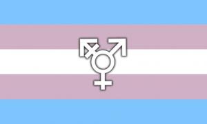 transexualidad no enfermedad